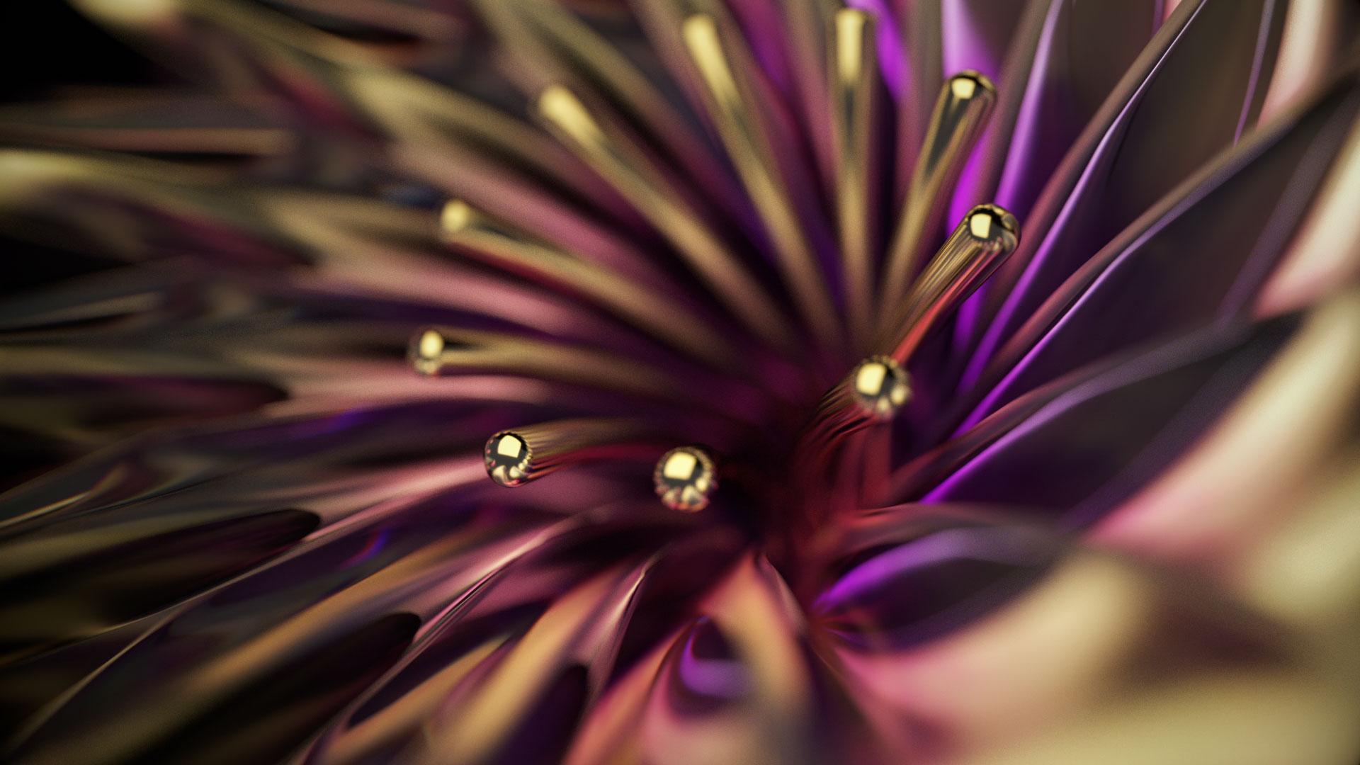 flowerline_2a